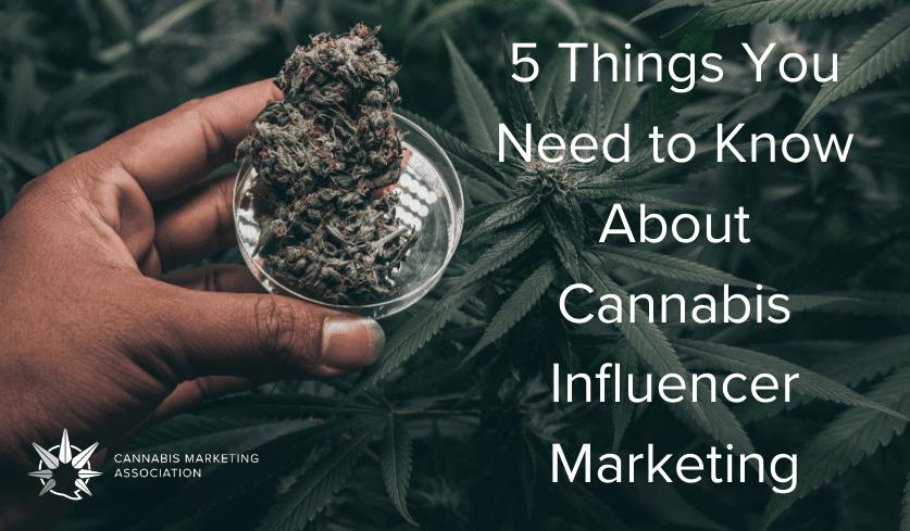 cannabis influencer marketing