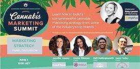 Sneak Peek! – Workshop: Effective Campaign Development Strategies with Ru Johnson – Cannabis Marketing Summit