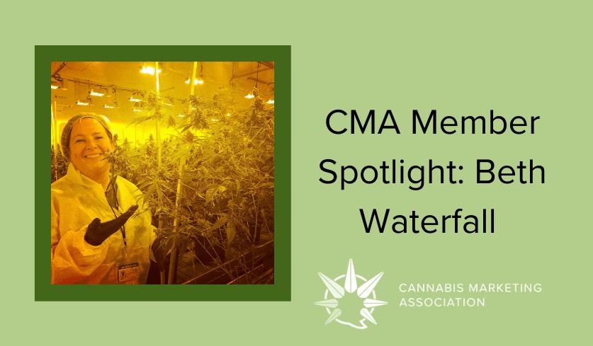 Member Spotlight: Beth Waterfall